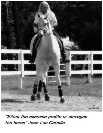 """Either the exercise profits or damages the horse"" Jean Luc Cornille"
